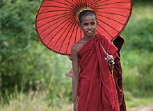 Novice monk with umbrella